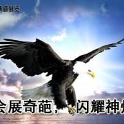 北京世博威展览有限公司